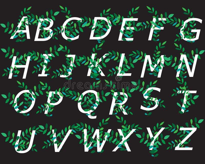 Dekoracyjny abecadło dekorujący z zielenią rozgałęzia się dla projekta pocztówki, sztandary, karty i logo, r?wnie? zwr?ci? corel  royalty ilustracja