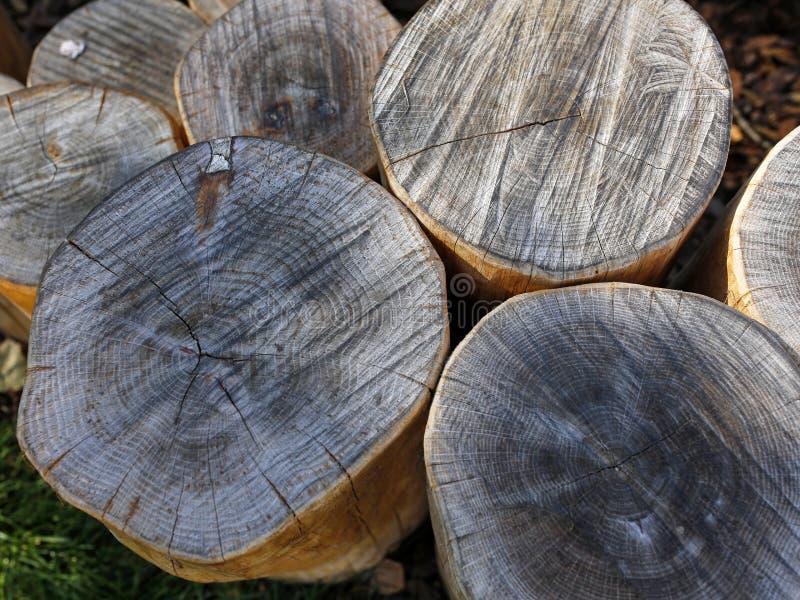 Dekoracyjny drewniany beli ogrodzenie zdjęcie stock