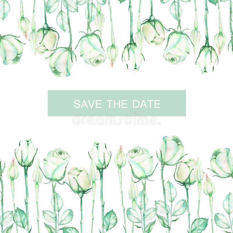Dekoracyjny miejsce z ornamentem akwareli oferty zielone róże dla teksta, ślubny zaproszenie (sztandar) ilustracji