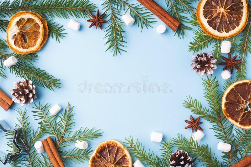 Dekoration für Weihnachtskonzept Nahrungsmittelorangennussgewürzkiefernkegel Weihnachtsbaum auf blauem Pastellhintergrund mit Kop stockbilder