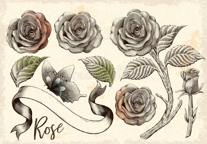 Dekorativ beståndsdeluppsättning för Retro rosor vektor illustrationer
