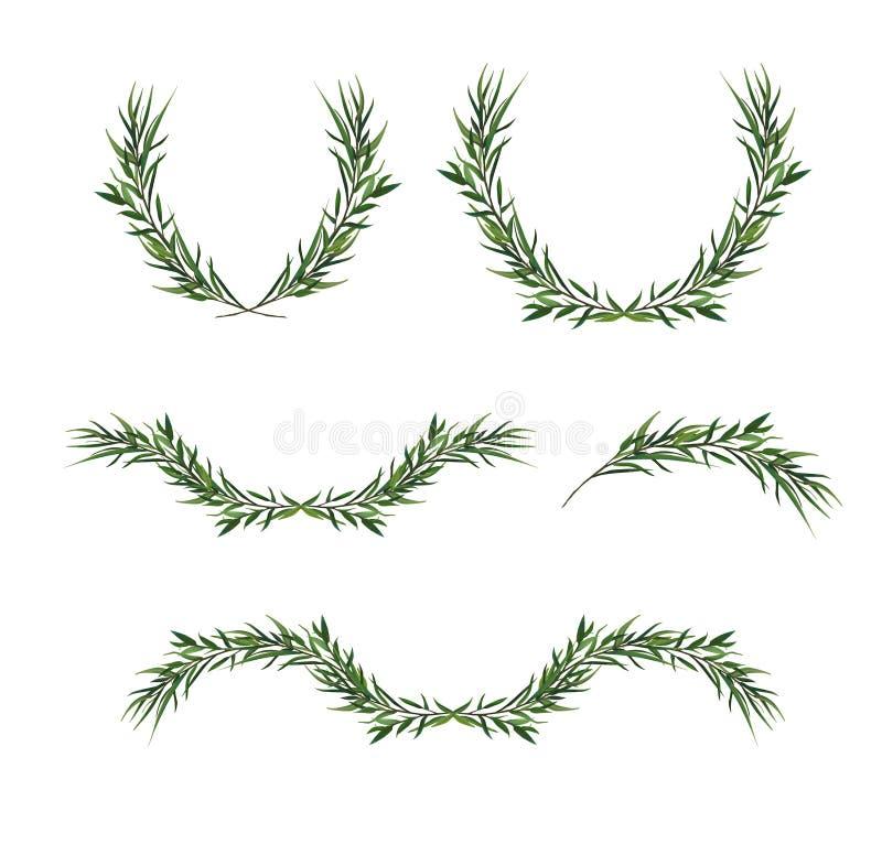 Dekorativ beståndsdeluppsättning för vektor Blad Wreat för eukalyptusrundagräsplan vektor illustrationer