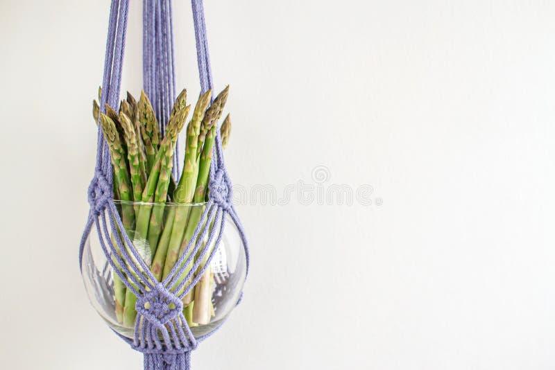 Dekorativ blomkruka för handgjord makramé på vit bakgrund arkivfoton