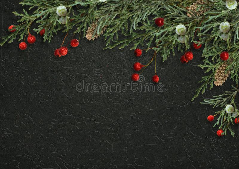 Dekorativ gräns för jul med granfilialer och röda bär på royaltyfria bilder