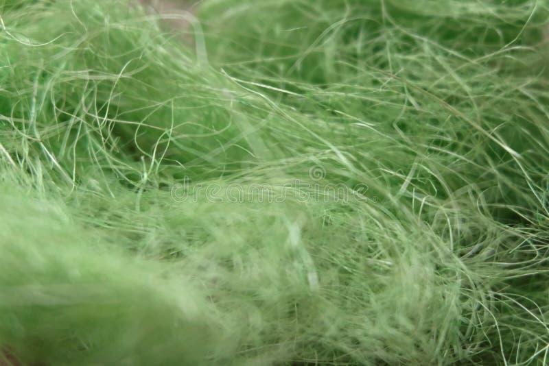 Dekorativ gräsbakgrund för vibrerande grön påsk royaltyfri bild