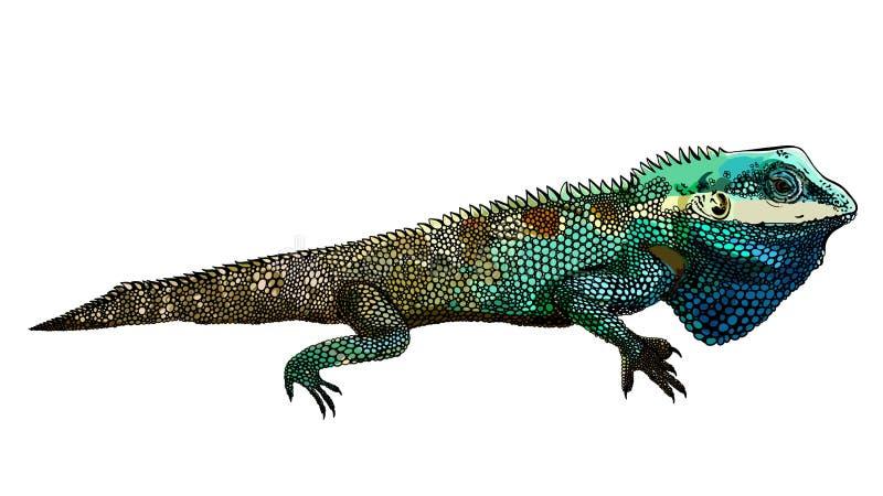 Dekorativ inspirerad kameleontkonstverkzentangle, lappar och klistermärkear Tropiska ödla- och monsterasidor royaltyfri illustrationer