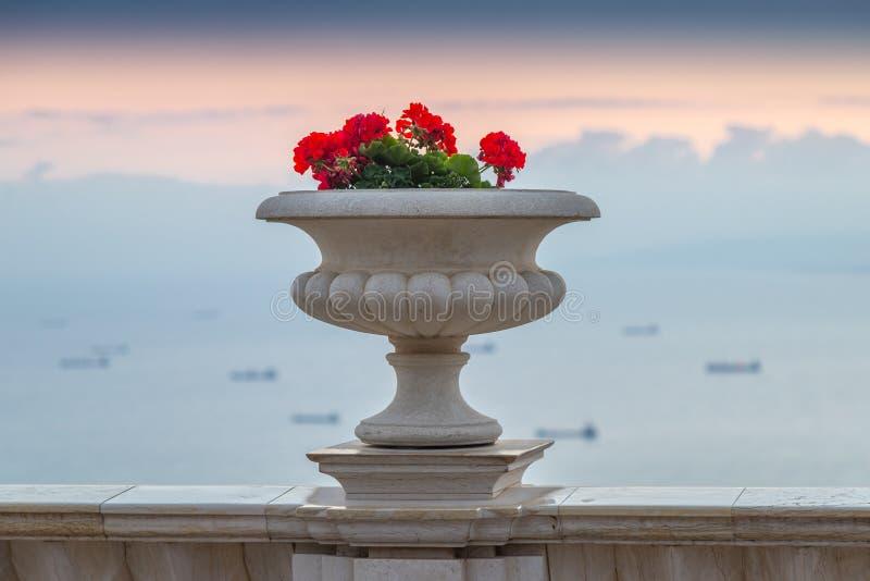 Dekorativ kruka med pelargon som står på balkongräcket på gryning mot bakgrunden av medelhavet royaltyfria bilder