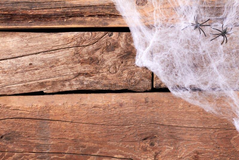 Dekorativ kuslig rengöringsduk och spindlar royaltyfria foton