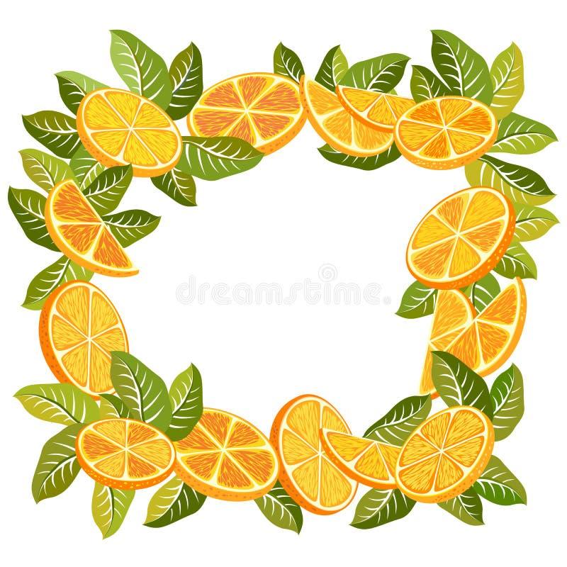 Dekorativ ram av apelsiner vektor illustrationer