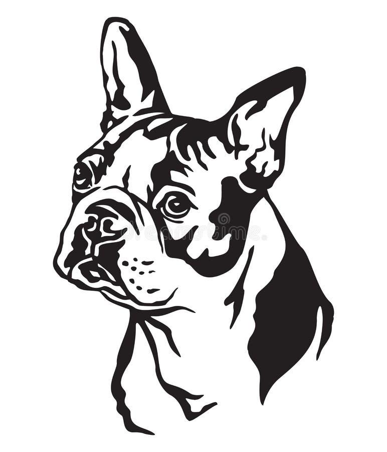 Dekorativ stående av illustrationen för vektor för hundBoston terrier vektor illustrationer