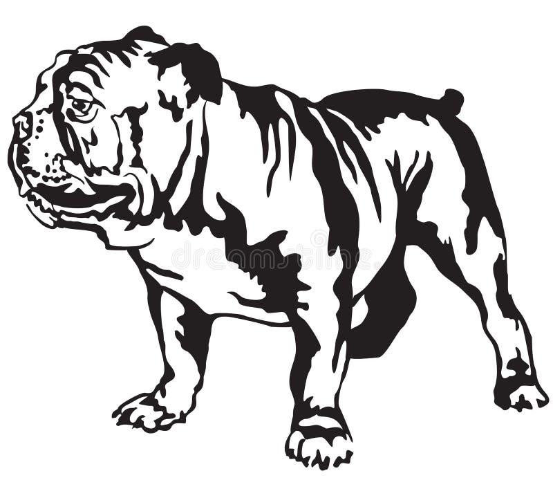 Dekorativ stående stående av för bulldoggvektor för hund den engelska illusen stock illustrationer