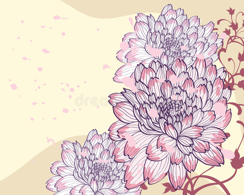 dekorativa bakgrundschrysanthemums stock illustrationer