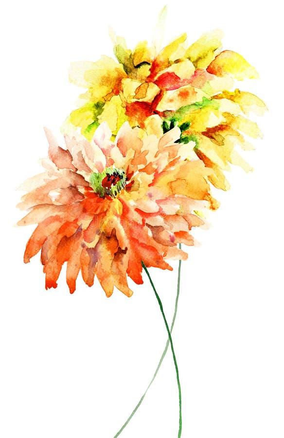 Dekorativa Gerber blommor stock illustrationer