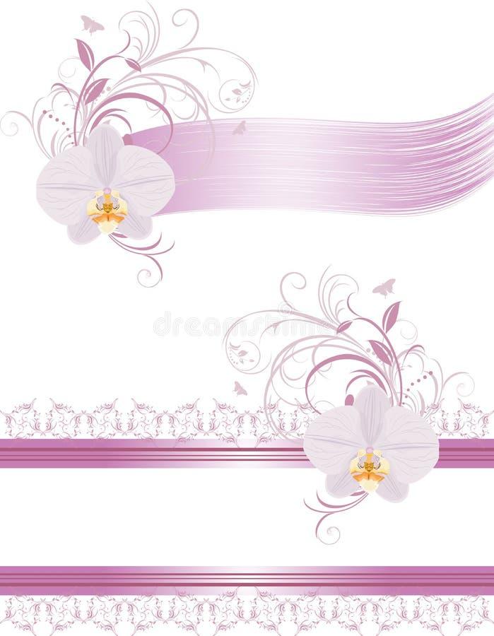 Dekorative Elemente für Auslegung mit Orchideen lizenzfreie abbildung