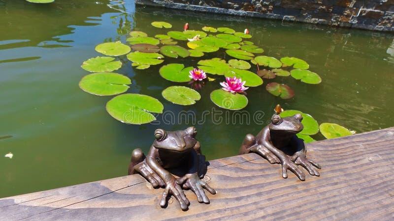 Dekorative Frösche und Lotus am Brunnen stockbild