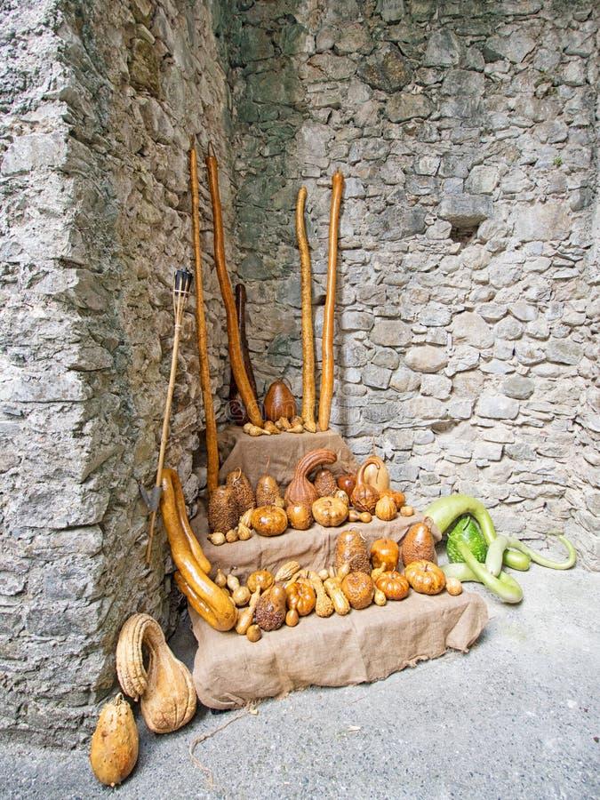 Dekorative Kürbisse Schöne braune Farben stockfoto