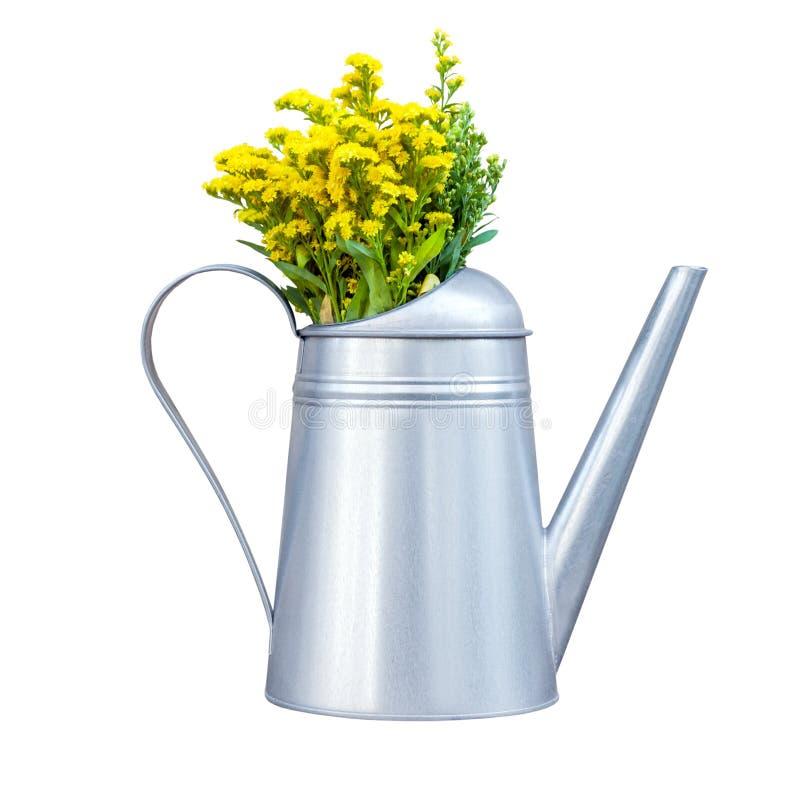 Dekorative Metallgießkanne mit den gelben Wildflowers lokalisiert lizenzfreie stockbilder