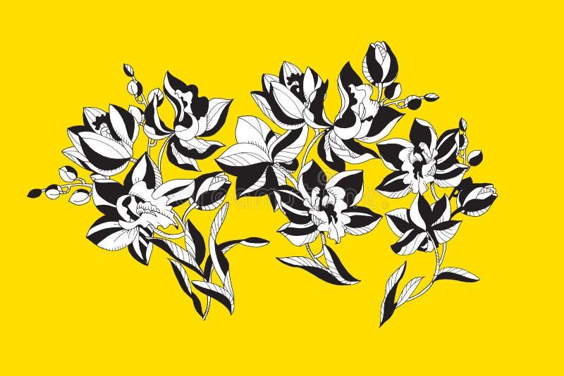 Dekorative Orchidee blüht Gestaltungselement stock abbildung