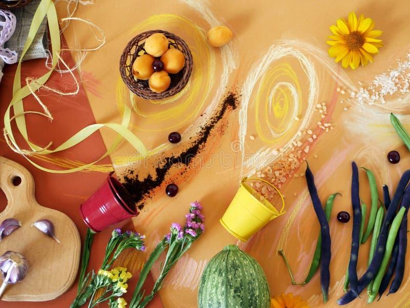 Dekorative Zusammensetzung des Gemüses, der Grüns, der Gewürze, der Blumen und des Seesalzes auf dem orange Papier, gemalt mit Pa lizenzfreie stockfotos