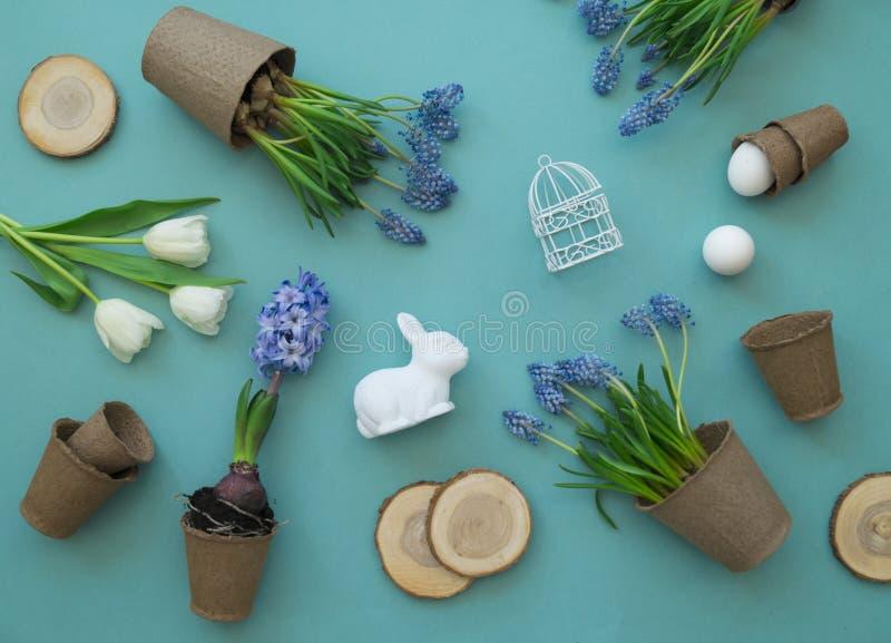 Dekorative Zusammensetzung Ostern auf einem blauen Hintergrund Weiße Tulpen, Blumentöpfe, unbemalte Eier und ein Baum lizenzfreie stockfotografie