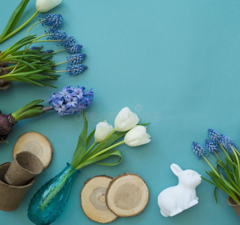 Dekorative Zusammensetzung Ostern auf einem blauen Hintergrund Weiße Tulpen, Blumentöpfe, unbemalte Eier und ein Baum stockfoto