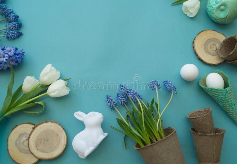 Dekorative Zusammensetzung Ostern auf einem blauen Hintergrund Weiße Tulpen, Blumentöpfe, unbemalte Eier und ein Baum lizenzfreie stockbilder