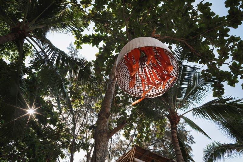 Dekorativer Anhänger auf den Palmen lizenzfreie stockfotos