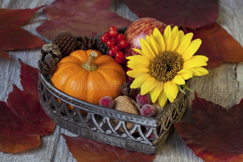 Dekorativer Autumn Flower Still Life lizenzfreie stockfotografie