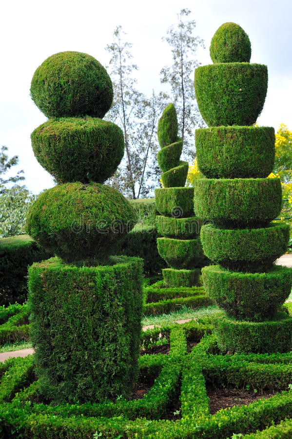 Dekorativer grüner Park - botanischer Garten Funchal stockbild