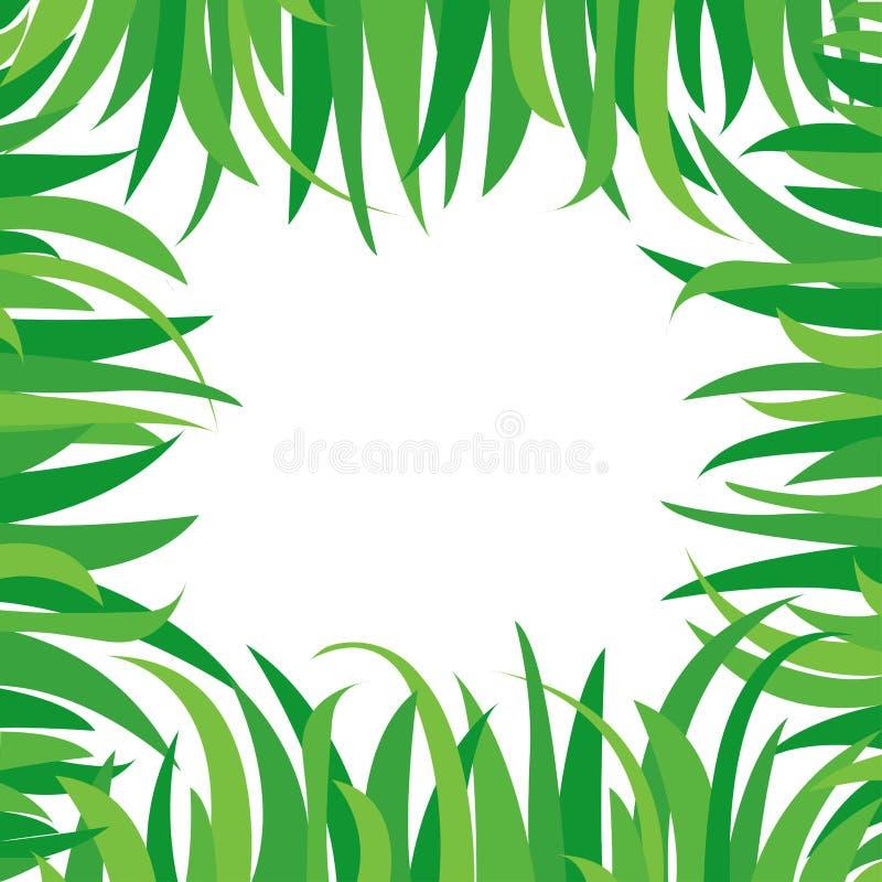 Dekorativer Hintergrund mit dem grünen Gras lokalisiert auf weißem Hintergrund Quadratischer Rahmen in der Naturart, Raum für Ihr vektor abbildung