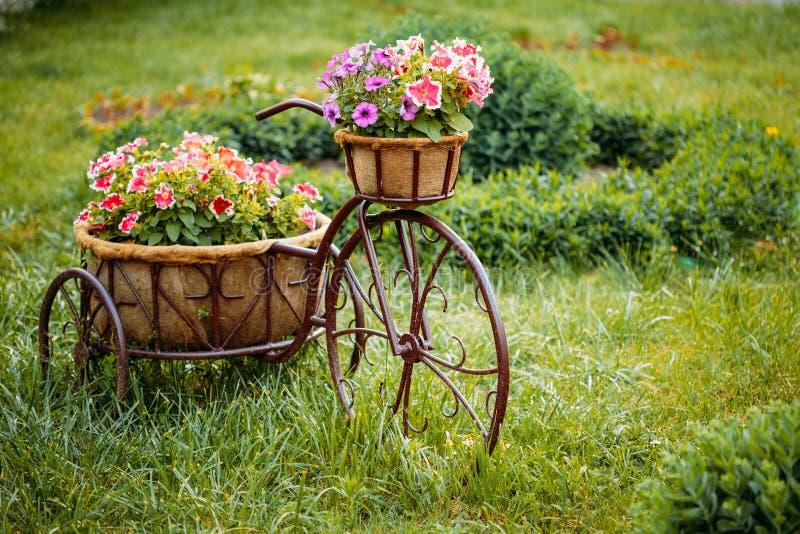 Download Dekorativer Weinlese-Modell-Old Bicycle Equipped-Korb-Blumen-Garten Stockfoto - Bild von dekoration, baumuster: 106803022
