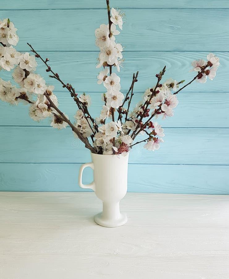 Dekoratives mit Blumenschönes der Kirschblüten-Niederlassung in einem Vase auf einem farbigen hölzernen Hintergrund, Frühling, Bl lizenzfreie stockbilder
