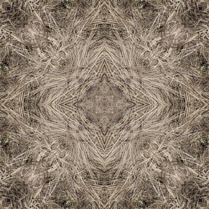 Dekoratives Muster, verschachtelte Linien, die Kombination von Fragmenten von Bildern stockfotos