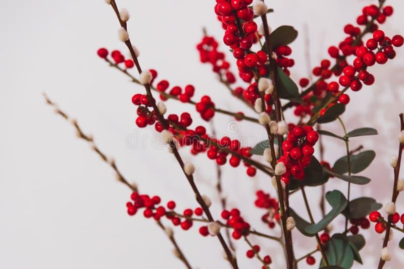 Dekoratives Weihnachtsthemenorientiertes Bündel rote Stechpalmenbeeren und -baumwolle des Eukalyptus stockfotos