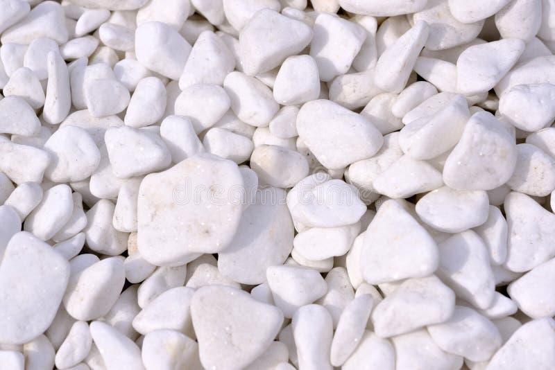 Dekorativt marmorera chiper royaltyfri fotografi