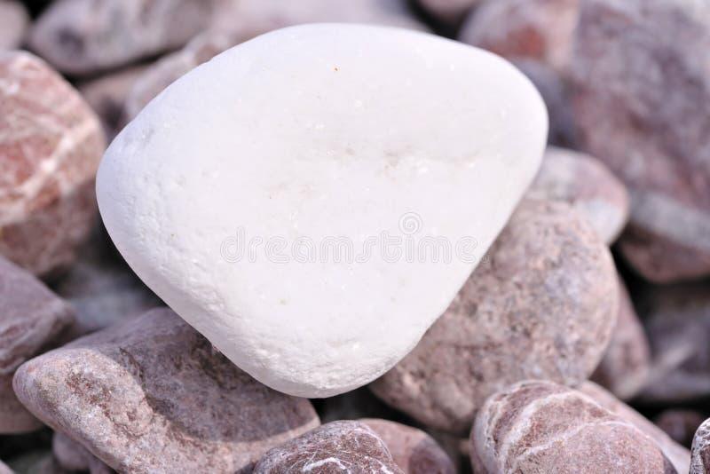 Dekorativt marmorera chiper arkivbild