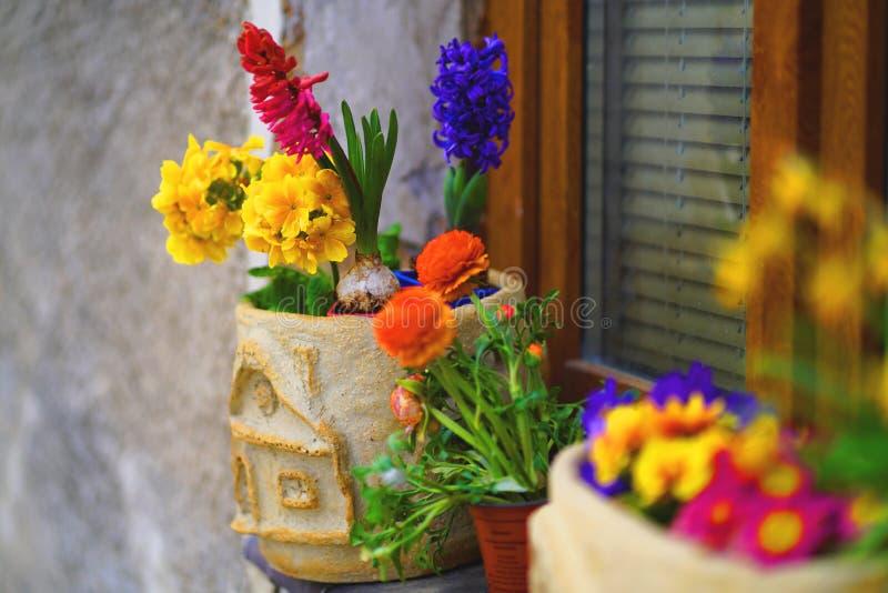 Dekorerad fönsterfönsterbräda med vårblommor i krukor royaltyfria bilder