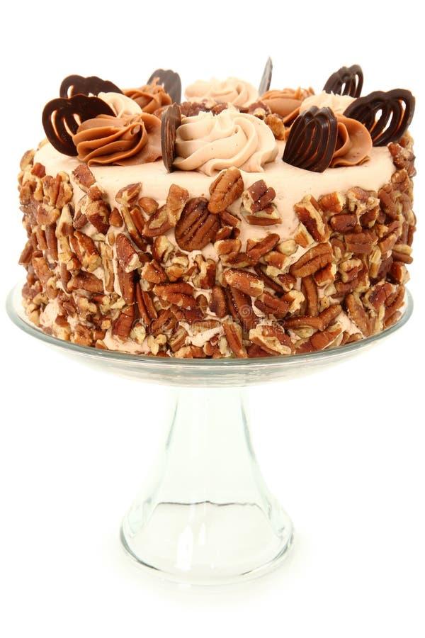 dekorerad pecannöt för cakecaramel choklad arkivbild