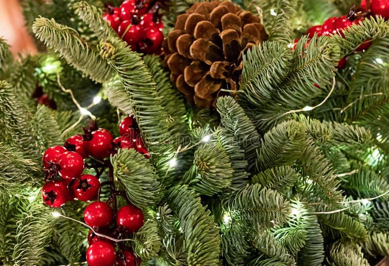 Dekorerade den täta gröna filialen för ljus julbakgrund av julgranen med röd den festliga bärjärnek och kotten royaltyfria foton