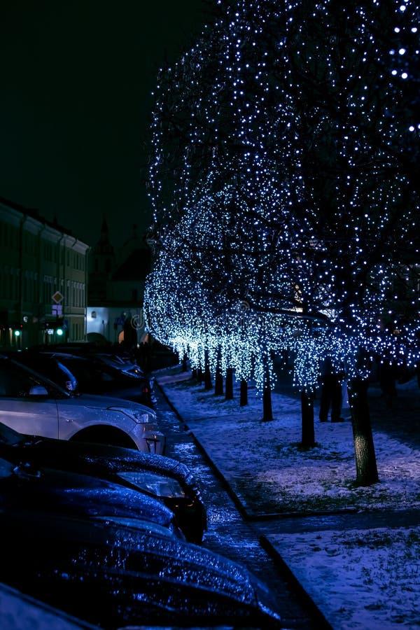 Dekorerade träd med glödande blåa julljus royaltyfri foto