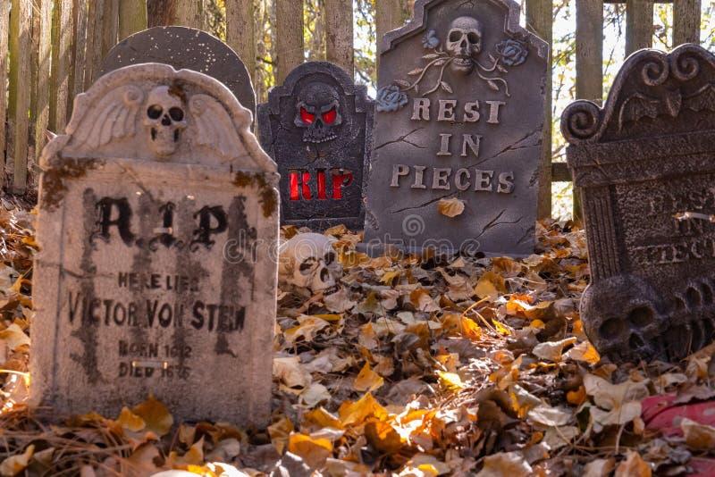 DekorujÄ…cy cmentarz z nagrobkami, żywymi trupami i kośćcowym, zostaje zdjęcia stock
