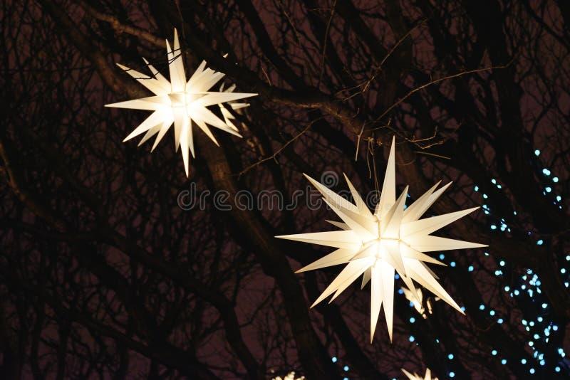 Dekorujący z lampionami i girlandami na drzewach zdjęcia royalty free