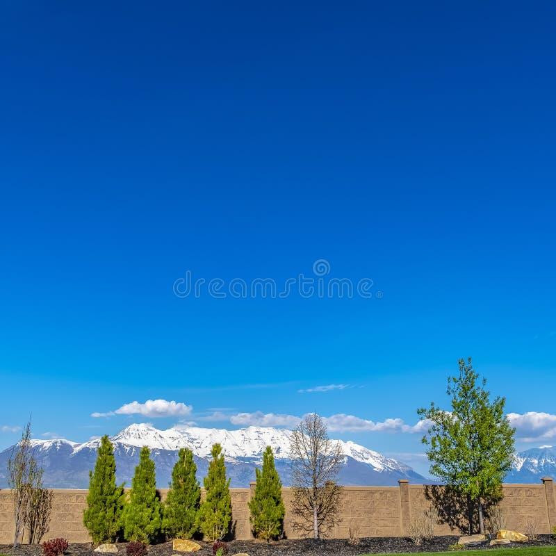 Dekte het Vierkante die Panorama van het kaderkader van een omheining met weelderige bomen tegen sneeuw wordt gevoerd berg af stock foto's