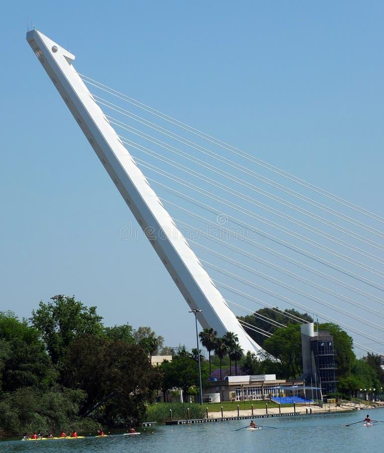 Del Alamillo, Sevilla del Puente di Calatrava fotografia stock libera da diritti
