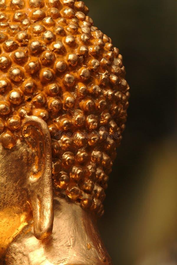 Del av Buddism-Buddha öron, vishet, arkivbilder