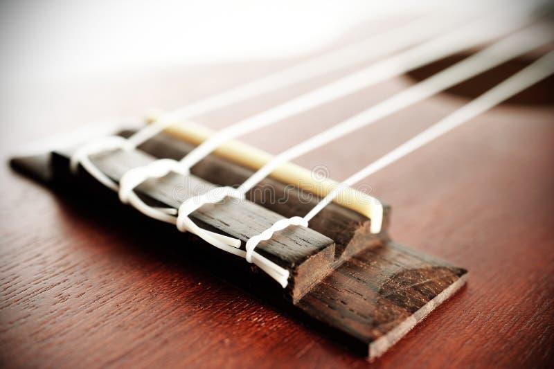 Del av ukulelen royaltyfri fotografi