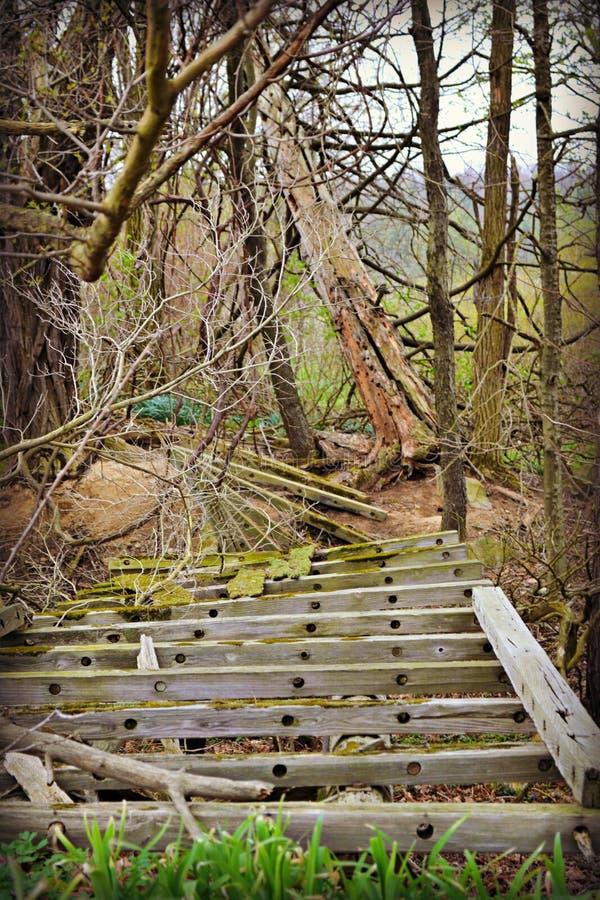 Del funcionamiento puente viejo enselvado abajo en granja foto de archivo