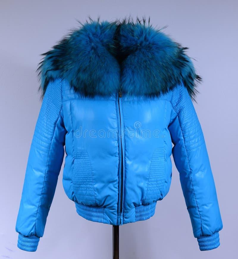 Del invierno chaqueta abajo aislada en fondo gris Abajo chaqueta azul en maniquí sin la cara outerwear imagen de archivo