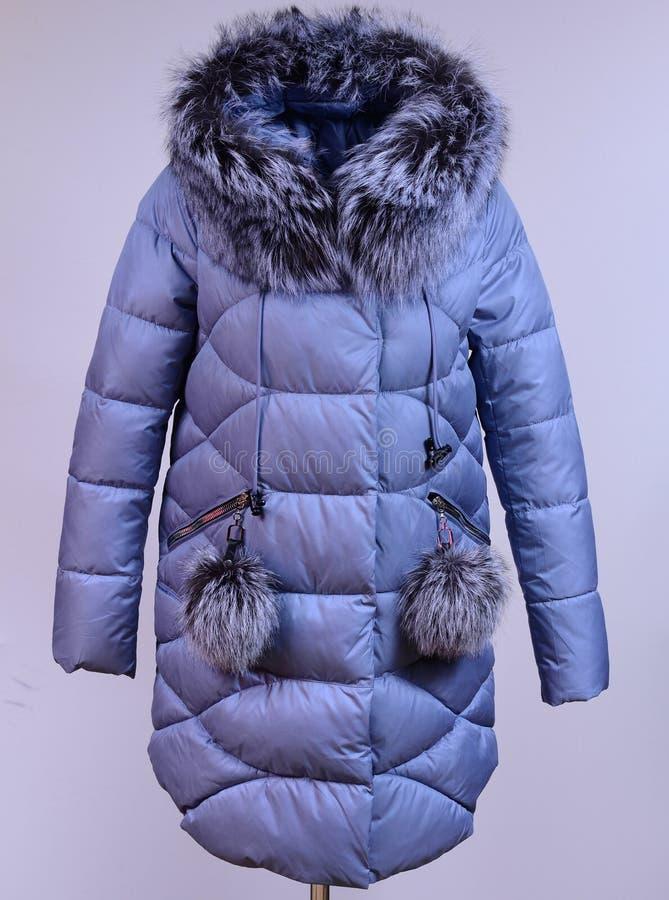 Del invierno chaqueta abajo aislada en fondo gris Abajo chaqueta gris con el zorro en maniquí sin la cara outerwear imagen de archivo libre de regalías