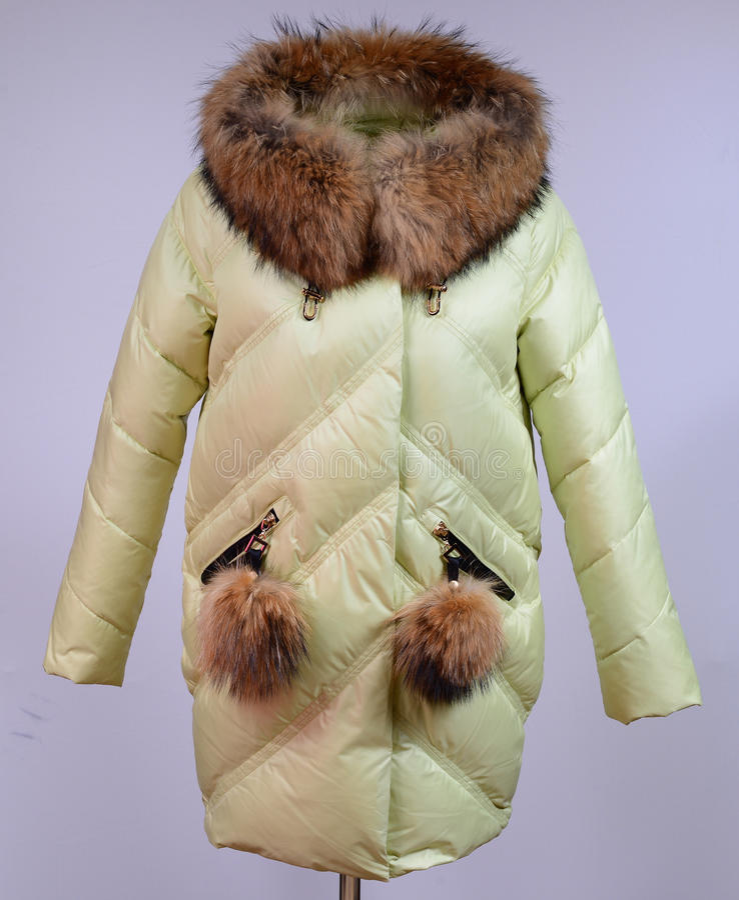 Del invierno chaqueta abajo aislada en fondo gris De la cal chaqueta abajo en maniquí sin la cara outerwear paño fotos de archivo